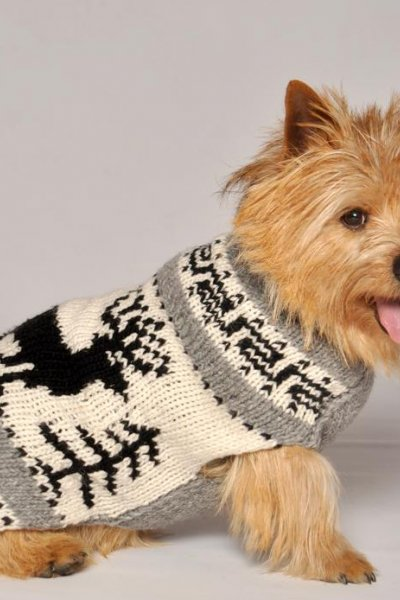 Reindeer Shawl Sweater by Chilly Dog