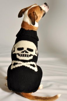 Black Skull Sweater by Chill