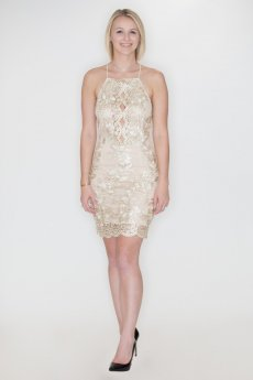 Metallic Embroidery Dress by She and Sky
